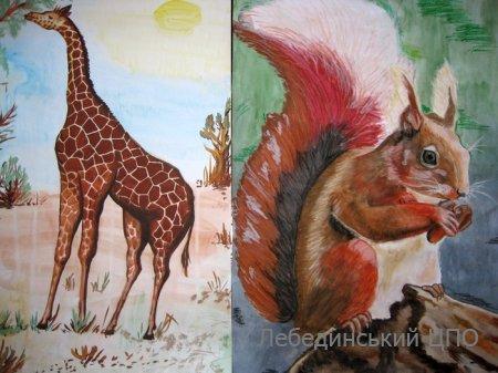Всеукраїнський конкурс зоологічна галерея